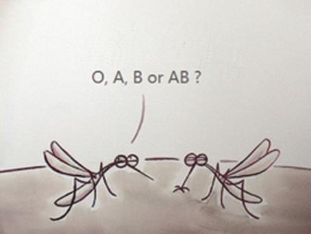 辟谣|关于驱蚊灭蚊的 9 大谣言,你信了吗?