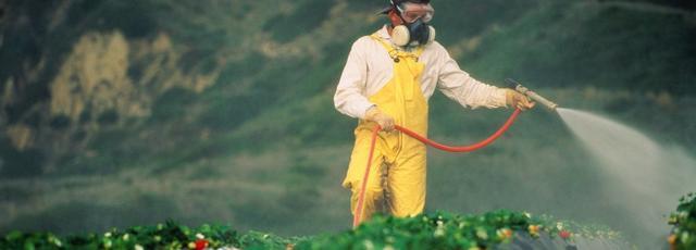 12_pesticide_1.jpg